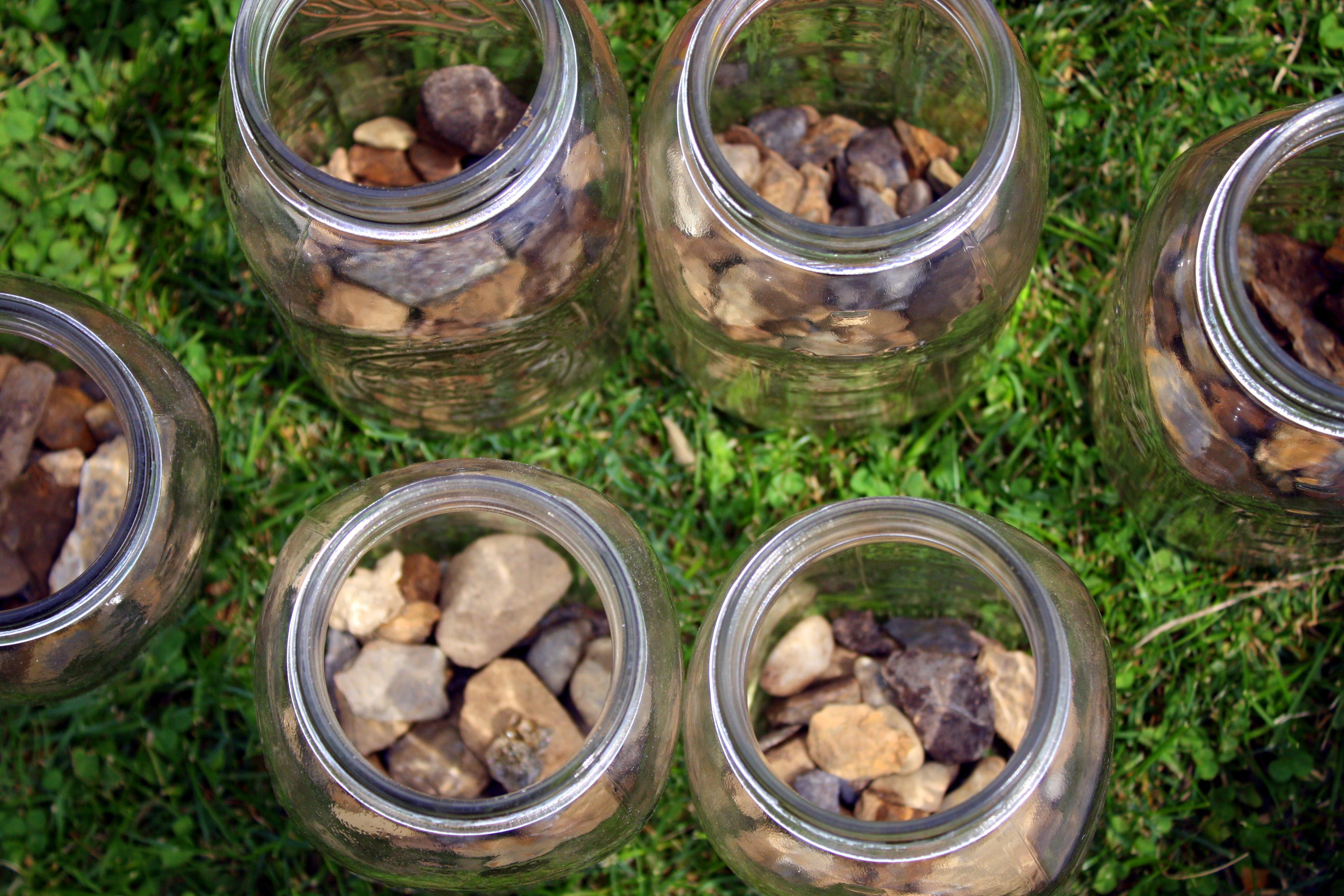 diy: indoor herb garden   zest&honey